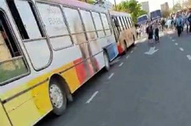 Micros de Vidal llevaron manifestantes macristas hasta el Obelisco
