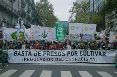 Buscan aprobar un proyecto para legalizar el autocultivo de cannabis y la venta de aceite en farmacias