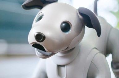 Sony patenta un robot de compañía