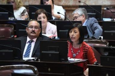 Senadores del Frente de Todos donaron sus sueldos para el fondo solidario contra el coronavirus