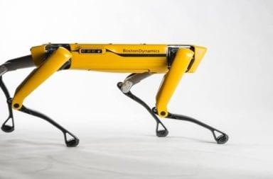 Conozcan a Spot, el robot cuadrúpedo de Boston Dynamics