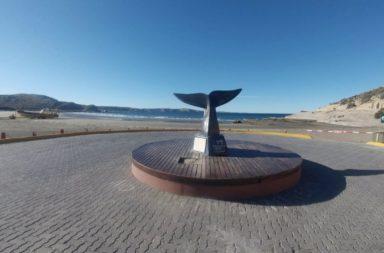 Península Valdés (Puerto Madryn)
