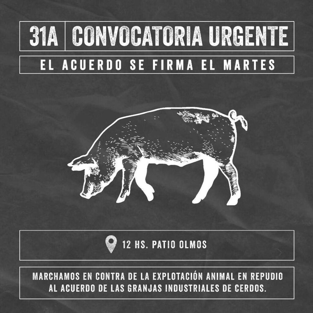 El Gobierno pospone hasta noviembre la firma del acuerdo con China por la instalación de granjas porcinas