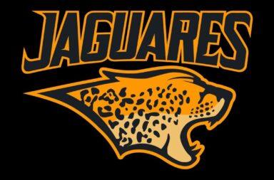 Jaguares en peligro de extinción