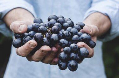 10 poderes milagrosos de las uvas