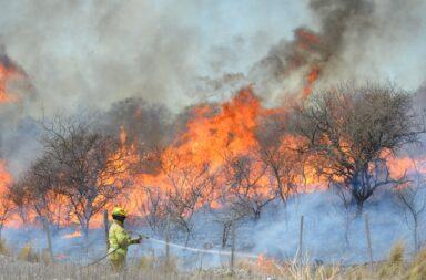 incendios fueron intencionales
