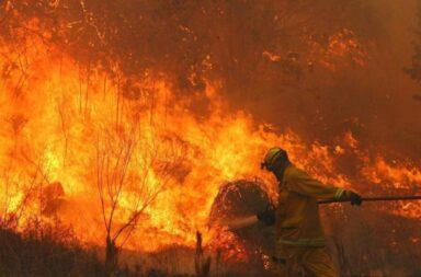 Desastre ambiental: medio país en llamas, 14 provincias registran incendios forestales