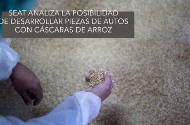 Seat analiza la posibilidad de desarrollar piezas de autos con cáscaras de arroz