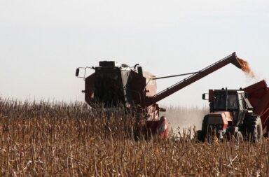 La Mesa de Enlace levantó el paro de comercialización de granos