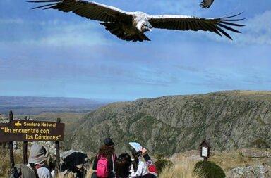 Parque Nacional Quebrada del Condorito - Cordoba – Argentina