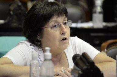 Juntos por el Cambio reclamará a Pfizer que algún directivo se presente en el Congreso argentino