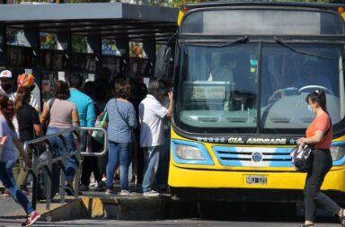 El transporte público será gratuito durante las PASO 2021