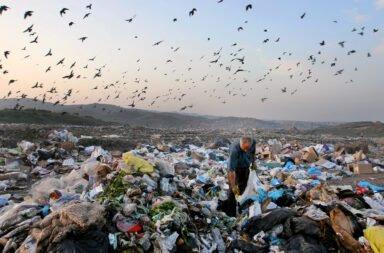 Alerta: solo el 10% de las empresas tratan de manera adecuada sus residuos industriales